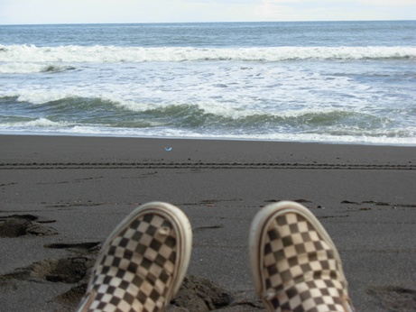 a photo of vans skateshoes looking out at paciifc ocean in costa rica